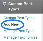 ダッシュボードのにCustom Post Typeという項目