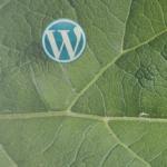 WordPressでログインしないと特定の記事がみれなくなるトラブル
